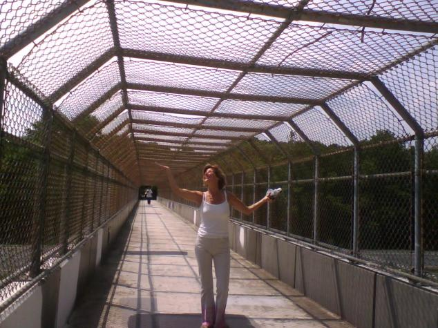 bridge-over-route-29-near-the-columbia-mall.jpg