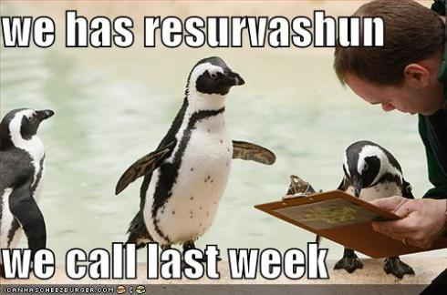 funny-pictures-penguins-clipboard-reservation.jpg