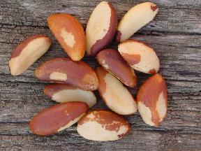 apple-pear-kefir-brazil-nut-puree