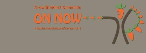 Burning Man More Carrot